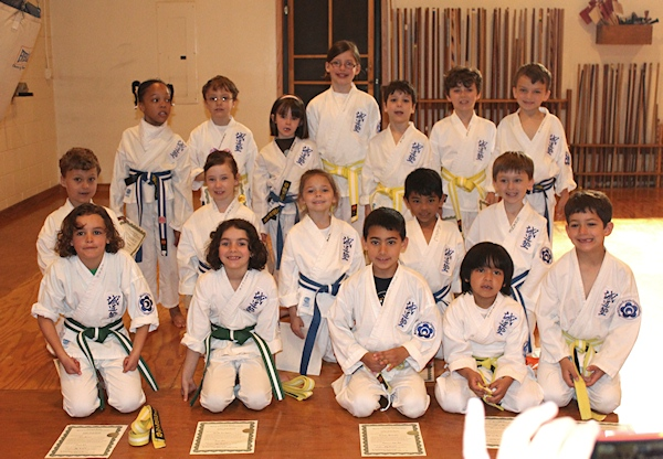 Also  between each colour belt  stripes are earned in the Junior Karate  programs  The stripes signify required techniques and or Kata at each belt  level  Pinterest