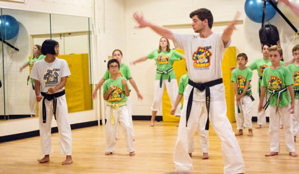 How to write an taekwondo essay